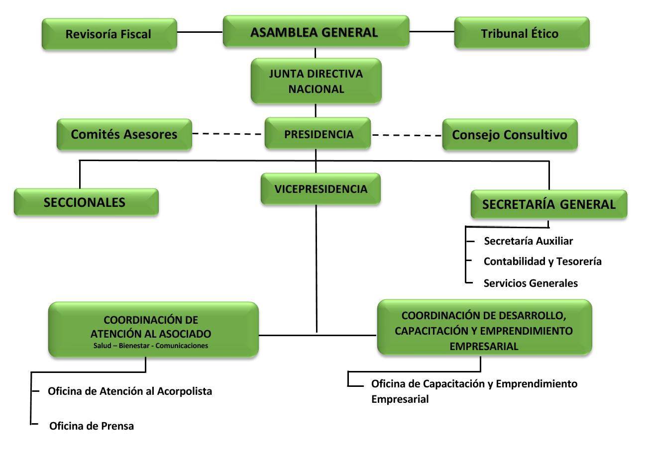 Organigrama Acorpol PNG
